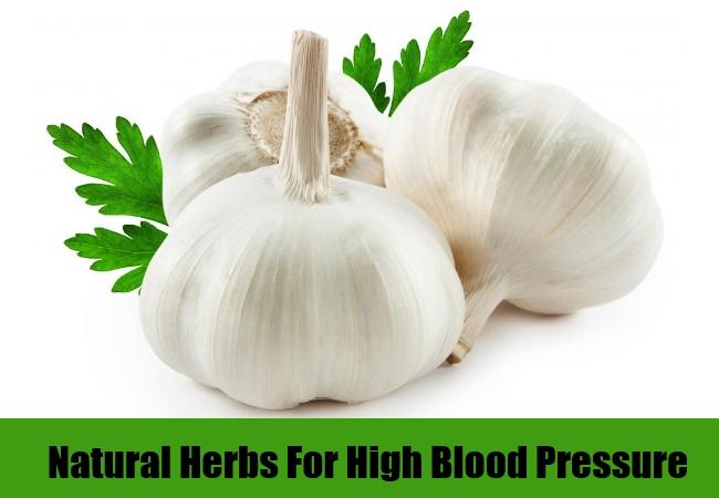 hypertension herbs