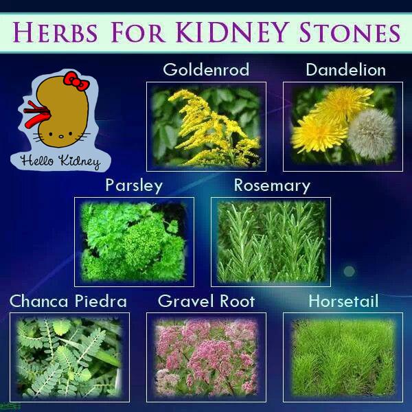 Dissolve Calcium Kidney Stones Naturally