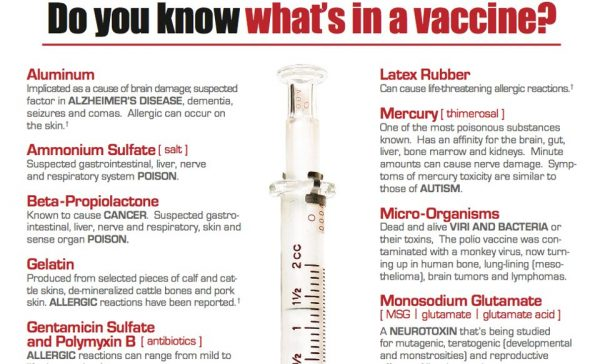 what is in the flu vaccine