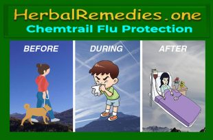 Chemtrail Flu Protection