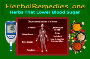 Herbs That Lower Blood Sugar