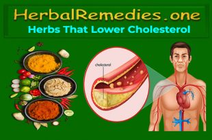 Herbs That Lower Cholesterol