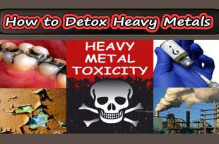 How to Detox Heavy Metals