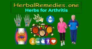 arthritis herbs